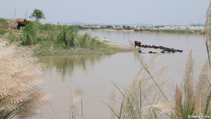 The most northern stretch of the river Yamuna within the borders of Delhi
