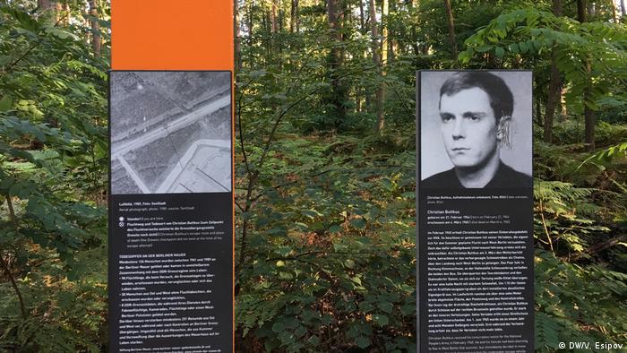 Историческая экспозиция в лесу