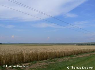 Rumänien bietet Agrarland zu günstigen Preisen
