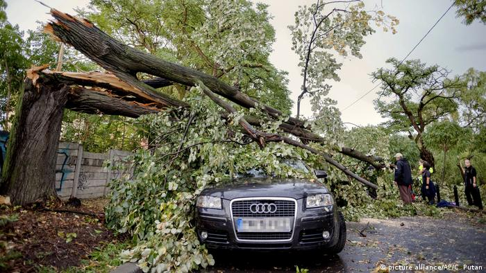 A tree trunk lays across a parked Audi car (picture alliance/AP/C. Putan)