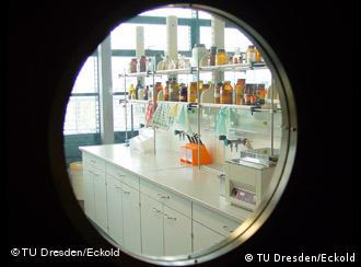 The view through the door of the lab