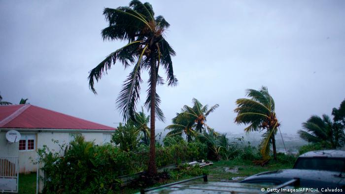 У Гваделупі готуються до урагану Марія