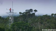Amazon Face Klima Monitoring