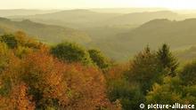 Blick über den Pfälzer Wald im Herbst, Rheinland-Pfalz