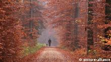 Herbstspaziergang (picture-alliance)