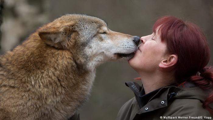 Tatjana Schneider snuggles with a wolf friend