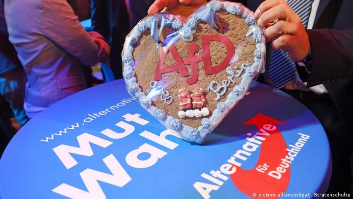 Bundestagswahl 2017 | AfD Symbolbild (picture-alliance/dpa/J. Stratenschulte)