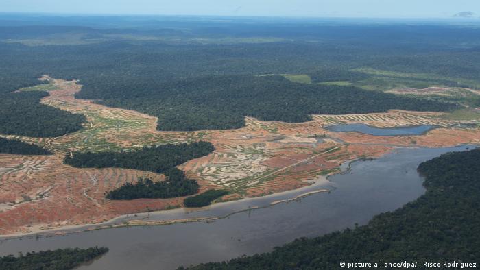 indigenes volk in amazonien