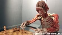 Ein Ganzkörperplastinat am Schachbrett ist in einer neuen Daueraustellung im Alten Hallenbad in Heidelberg ausgestellt, aufgenommen am 22.09.2017. Im Alten Hallenbad präsentiert der umstrittene Plastinator G. von Hagens auf 1000 Quadratmetern rund 150 Einzelpräparate wie Organe, aber auch 20 Ganzkörperplastinate. (zu dpa: Letzte Ruhe in Heidelberg - Umstrittenes «Körperwelten»-Museum öffnet vom 27.09.2017) Foto: Wolfgang Jung/dpa +++(c) dpa - Bildfunk+++   Verwendung weltweit