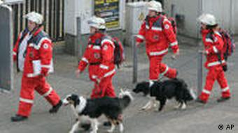 Firemen with sniffer-dogs approach the site of the collapsed Cologne building