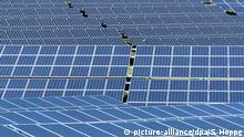 Solar panels in Germany (picture-alliance/dpa/S. Hoppe)