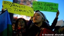 Chile Mapuche Protest
