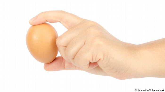 Hand hält braunes Hühnerei