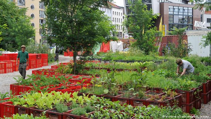 Prinzessinnengarten in Berlin