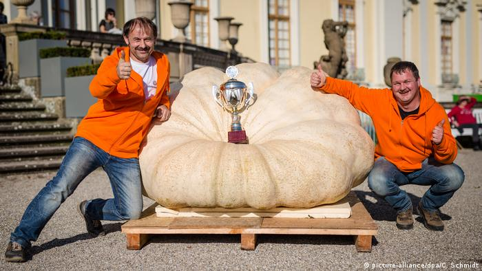 Winner of the Pumpkin Festival