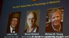Schweden - Vergabe des Nobelpreises für Medizin - Jeffrey C. Hall, Michael Rosbash and Michael W. Young