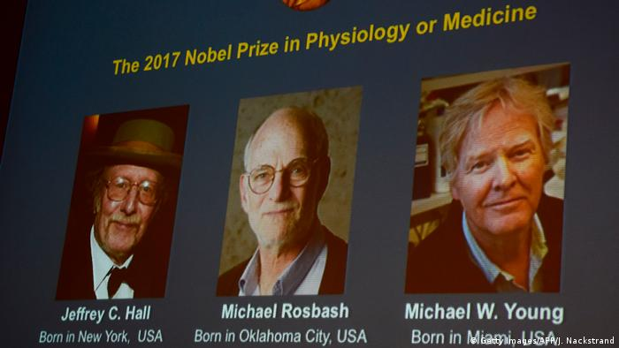 Schweden - Vergabe des Nobelpreises für Medizin - Jeffrey C. Hall, Michael Rosbash and Michael W. Young (Getty Images/AFP/J. Nackstrand)