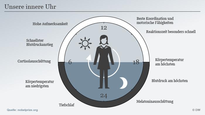 Infografik Schlafrythmus innere Uhr Nobelpreis Medizin 2017 DEU