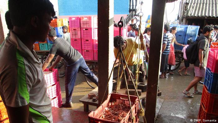 Fischer aus Bengalen (DW/P. Samanta)