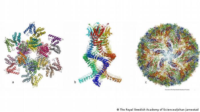 Nobelpreis Chemie Grafiken
