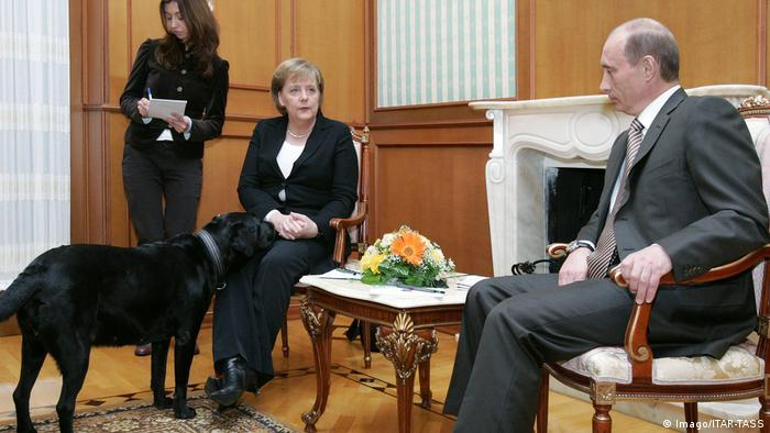 Angela Merkel is being officially received by Vladimir Putin, whose large black dog has stuck his nose onto her lap.