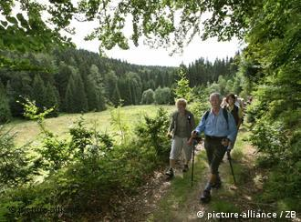 Vessertal reserve in the Thuringian Forest