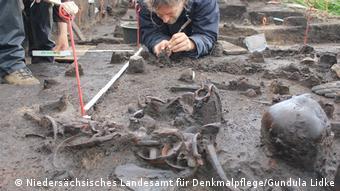Archäologen beim Freilegen der Fundschicht im Tollensetal. Es sind Schädel und Knochen zu sehen. (Niedersächsisches Landesamt für Denkmalpflege/Gundula Lidke)