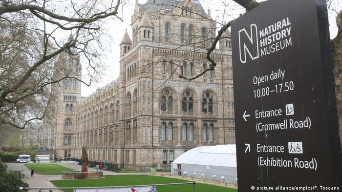UK Natural History Museum in London (picture alliance/empics/P. Toscano)