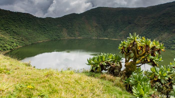 Volcanoes National Park in Rwanda