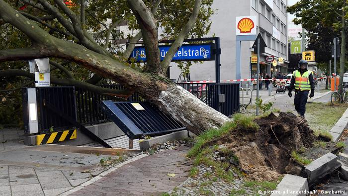 Uprooted tree in front of underground station in Berlin