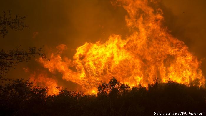 USA Kalifornien Waldbrände Großbrand (picture-alliance/AP/R. Pedroncelli)