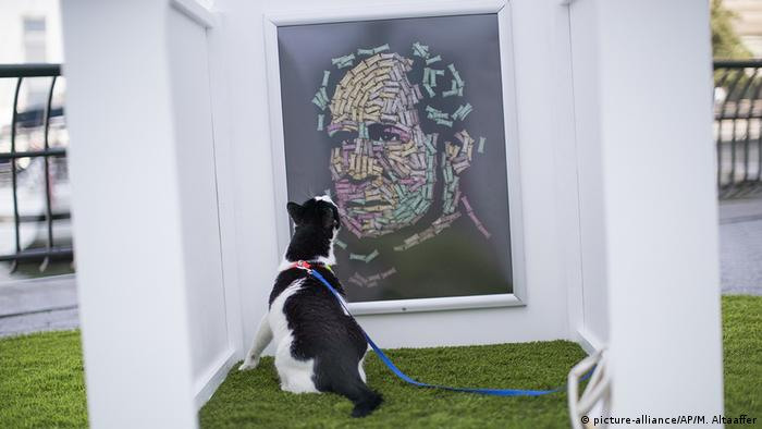 Dog sitting in front of an artwork at an exhibition (picture-alliance/AP/M. Altaaffer)