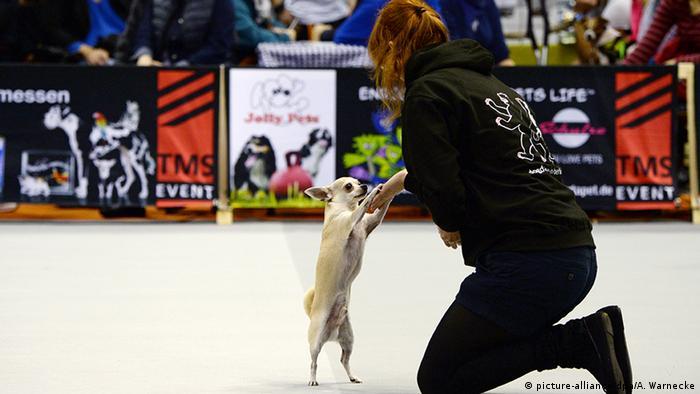 Heimtiermesse Berlin 2014, Frau tanzt mit Hund (picture-alliance/dpa/A. Warnecke)