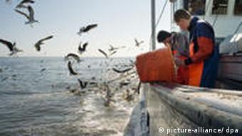 Krabbenfischer auf der Nordsee (Quelle: dpa)