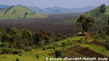 Afrika Kongo Brandrodung Kohle