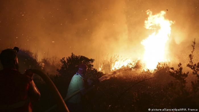 Лісові пожежі у Португалії