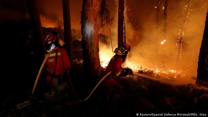 Portekiz'de orman yangını: En az 27 ölü