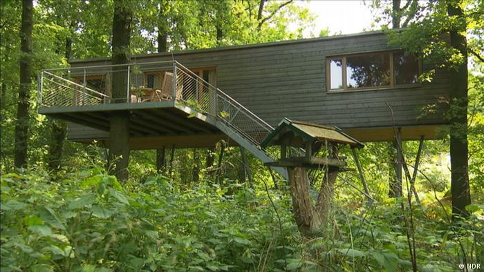 Baumhotel Baumgeflüster in Niedersachsen