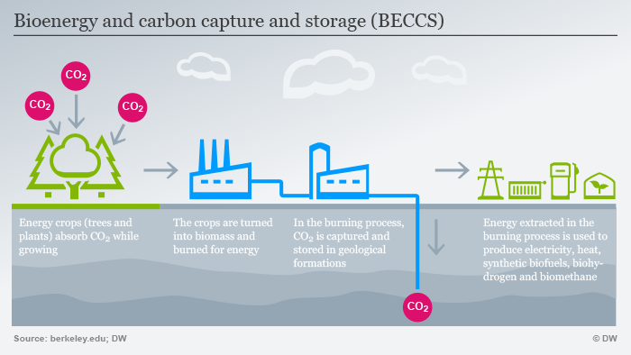 Info graphic: Bioenergy and carbon capture and storage