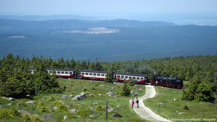 Deutschland Harz Schmalspurbahn am Brocken (picture-alliance/dpa/D. Naupold)