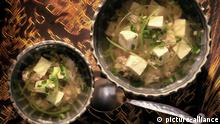Global Ideas, Tofusuppe ...