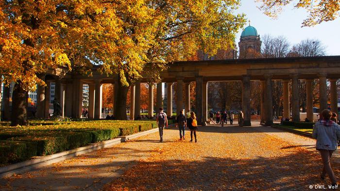Музейный остров осенью