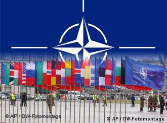 NATO logo with member flags