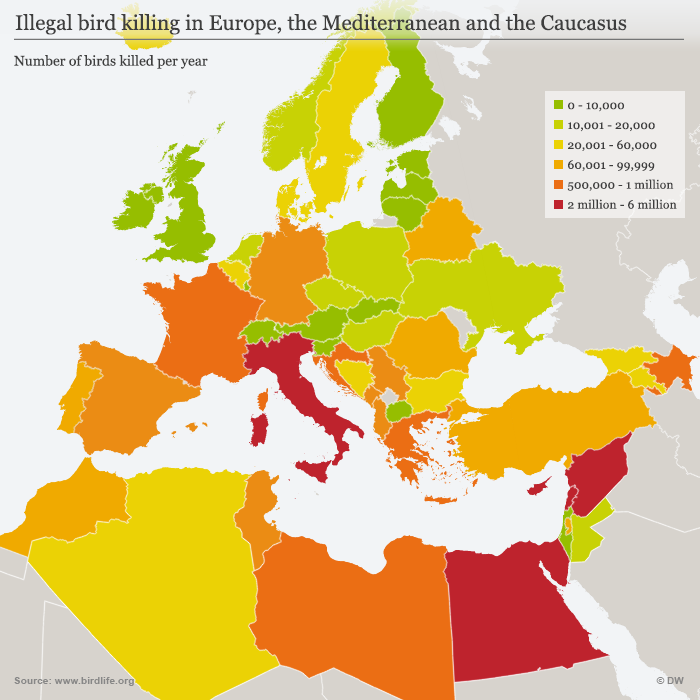 Infographic birds killed in Europe, the Mediterranean and the Caucasus ENG