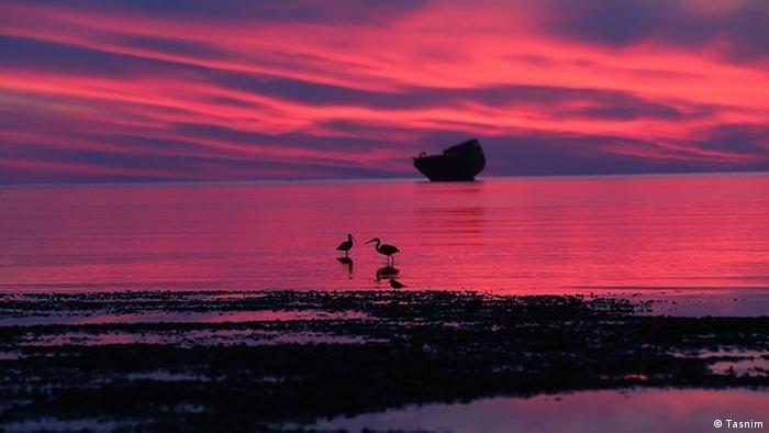 Kolbeh Hoor, eine Landspitze (Kap) auf dem Kish Insel im Süden vom IranUmweltverschmutzung im Persischer Golf