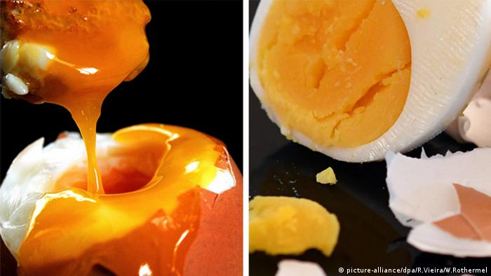 Hard and soft boiled eggs (picture-alliance/dpa/R.Vieira/W.Rothermel)