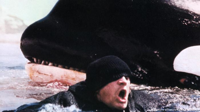 Filmstill Orca, der Killerwal (picture-alliance/United Archives)