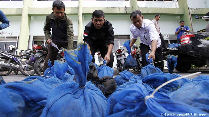 Indonesien über 100 Schuppentiere beschlagnahmt (Getty Images/AFP/F. Elkareem)