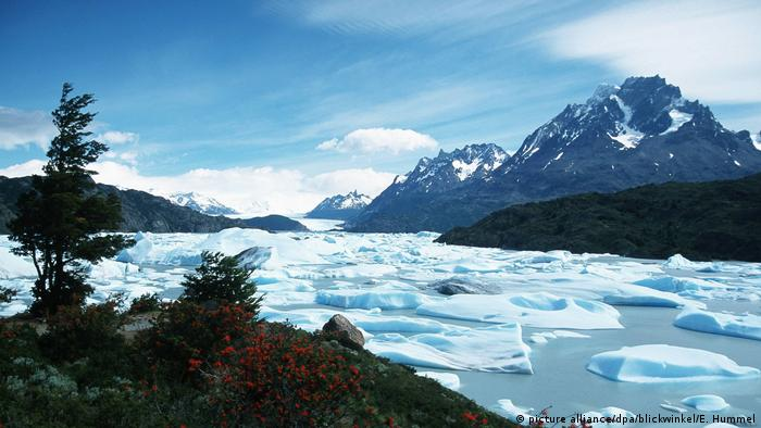 Lumps of ice flowing in water at Chile's Grey Glacier