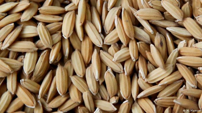 Rice from Bangladesh